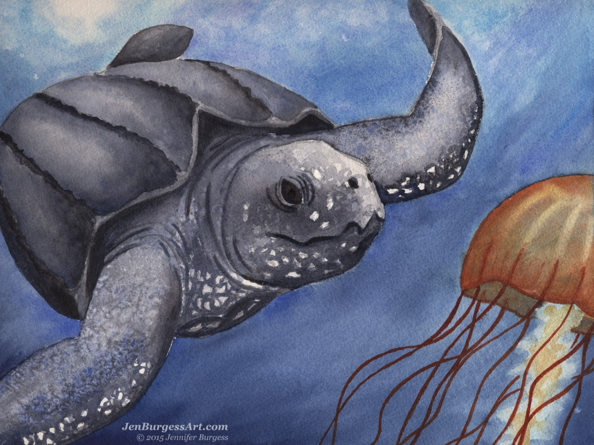 Turtle and Jellyfish painting by Jen Burgess