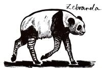 Zebranda by Carrie Cizauskas