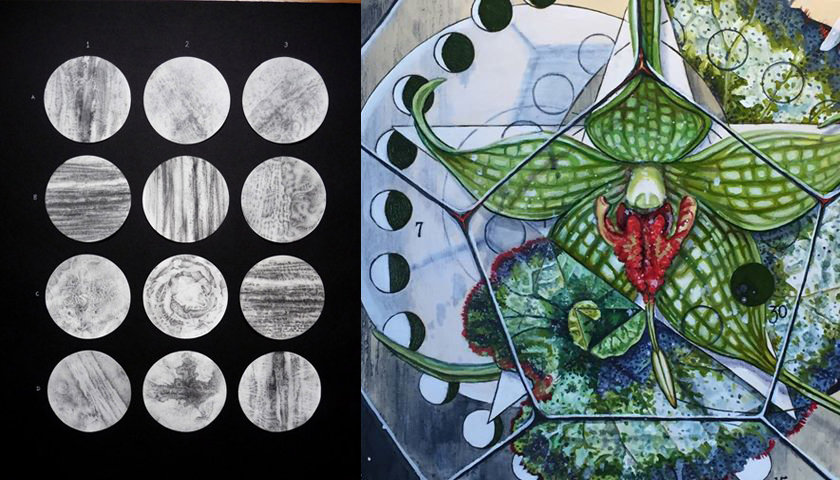 Work by my collaborators; Sally Hunter (L), & Michelle Anderst (R)